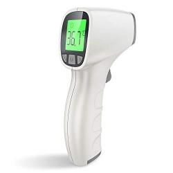 Termometro digitale